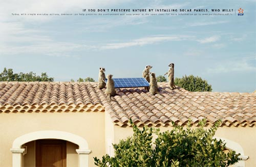 EDF French Electricity