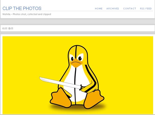 Nishita - another Free Photo Blog WordPress Theme