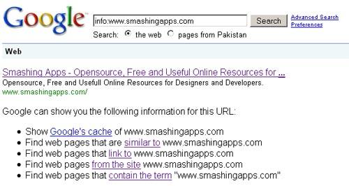 Google website info
