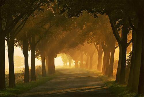 Autumn road… by Krzysztof Browko