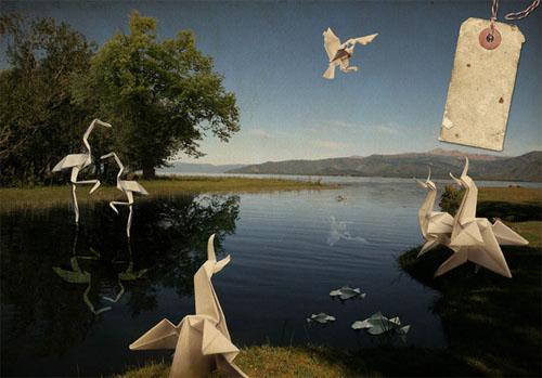 Esquire Origami Project