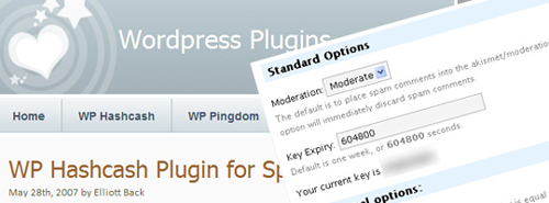 15-Most-Important-Wordpress-Plugins-To-Help-You-Fight-Spam
