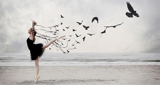 Ballet-Bird