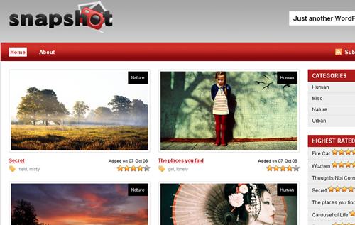 Wordpress Portfolio Theme