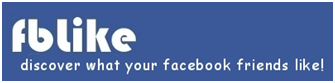 FBlike: An Easy Way To Find What Your Facebook Friends Like and Discover New Trends 8