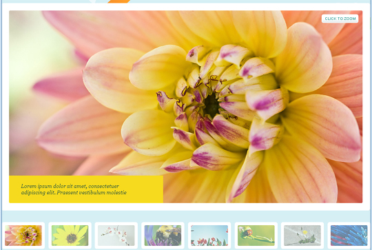 Most Interesting Design Trends For Online Photo Galleries 2