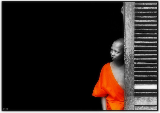 Mindblowing Assortment Of Black And White Photography With Partial Colors 26