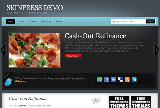 The Best Premium-Like Free Wordpress Themes Of 2010 3