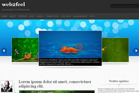 The Best Premium-Like Free Wordpress Themes Of 2010 5