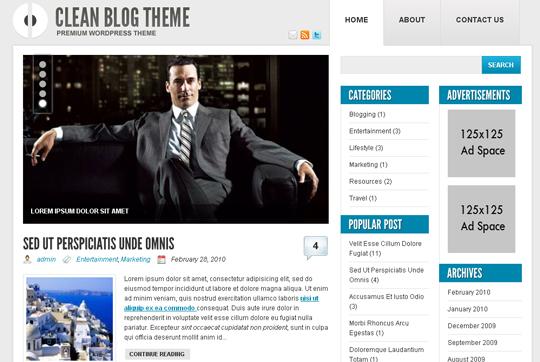 The Best Premium-Like Free Wordpress Themes Of 2010 6