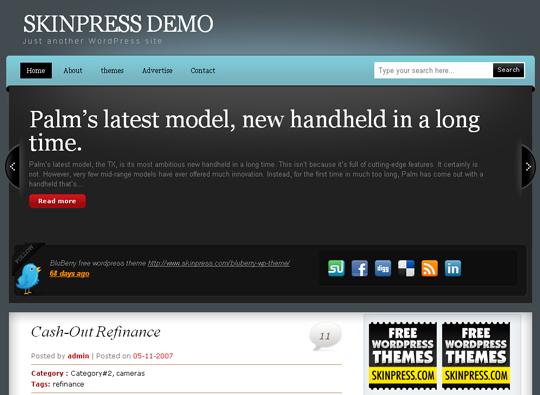 The Best Premium-Like Free Wordpress Themes Of 2010 42