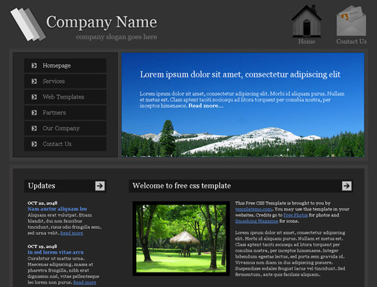 45 Free And High Quality (X)HTML/CSS Website Templates 18