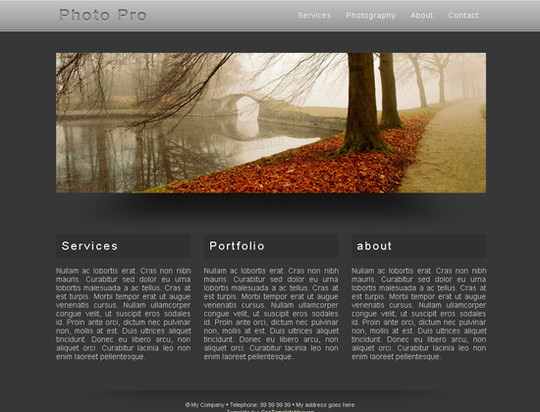45 Free And High Quality (X)HTML/CSS Website Templates 27