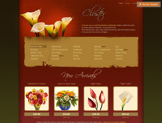 45 Free And High Quality (X)HTML/CSS Website Templates 5