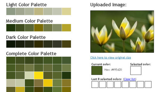 45 Color Tools And Resources For Choosing The Best Color Palette For Your Designs 30