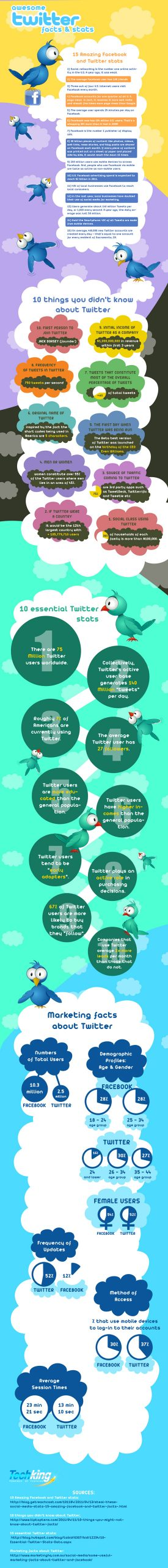 Awesome Yet Revealing Stats And Facts About Twitter (Infographic) 11