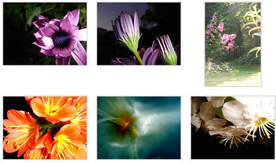 40 Amazing Tools To Enhance Your Flickr Experience 5