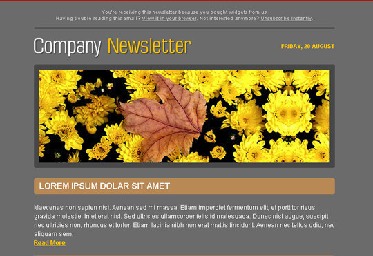 50 Useful And Free HTML Newsletter Templates 7
