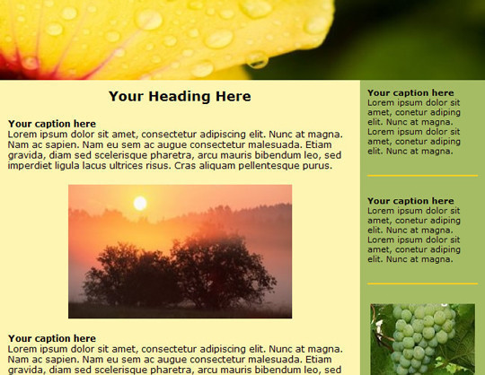 50 Useful And Free HTML Newsletter Templates 50