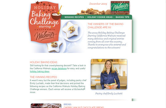 Showcase Of Creative And Effective Email Newsletter Designs 8