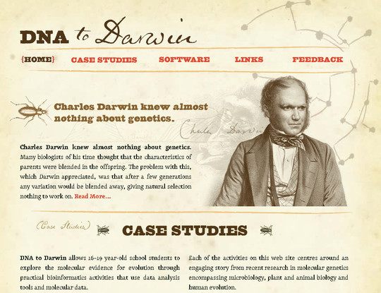 50 Hand Drawn Website Designs For Your Inspiration 20