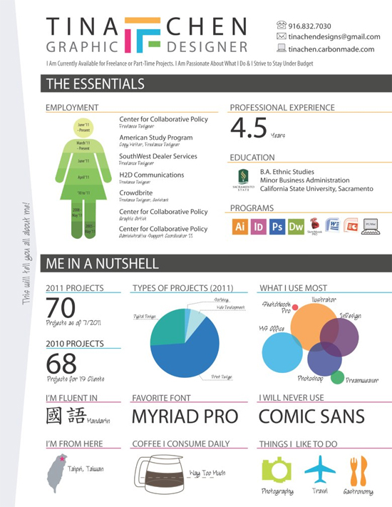 Resume Designs (Like Infographics) That Can Stand Out In A Crowd 29