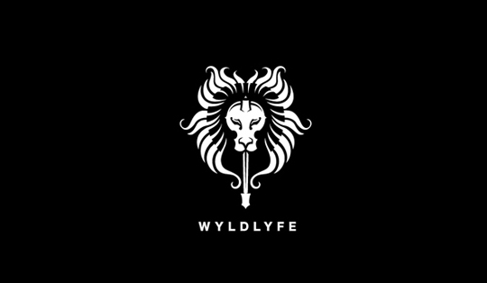 40 Examples Of Artistic Symmetrical Logo Designs 15