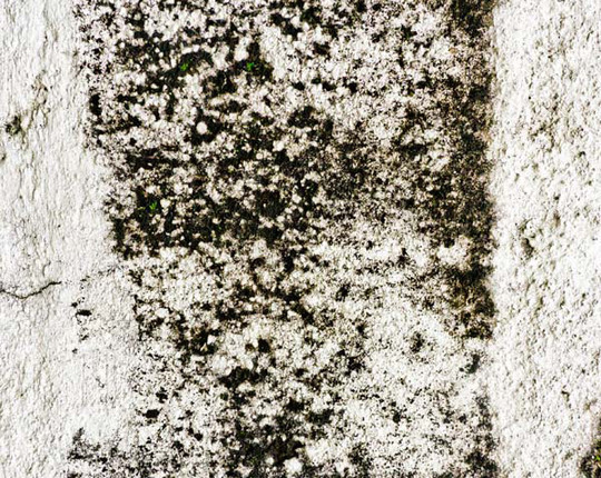 Best Of 2011: 70 Beautiful And High Quality Free Textures 40
