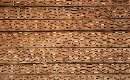 Best Of 2011: 70 Beautiful And High Quality Free Textures 2