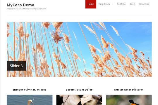 Best Of 2011: A Beautiful Collection Of 50 Free WordPress Themes 22
