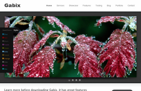 Best Of 2011: A Beautiful Collection Of 50 Free WordPress Themes 33
