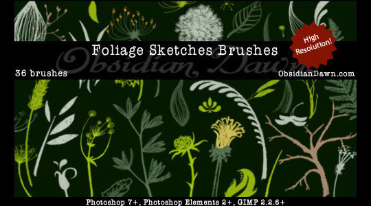 16 Free High Quality Floral Photoshop Brush Sets 12
