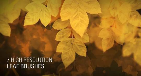 30 Free And Fresh Photoshop Brush Sets 2