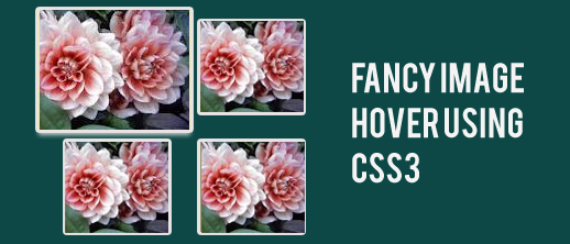 Showcase Of Useful CSS3 Tutorials And Techniques 6