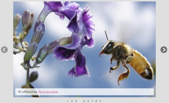 37 Fresh jQuery Image, Content Sliders And Slideshows 10