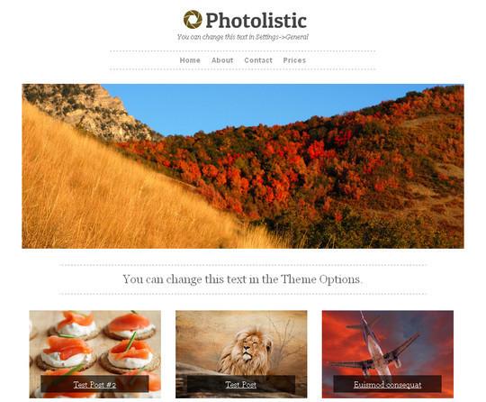 40+ Fresh And Free Wordpress Themes 19