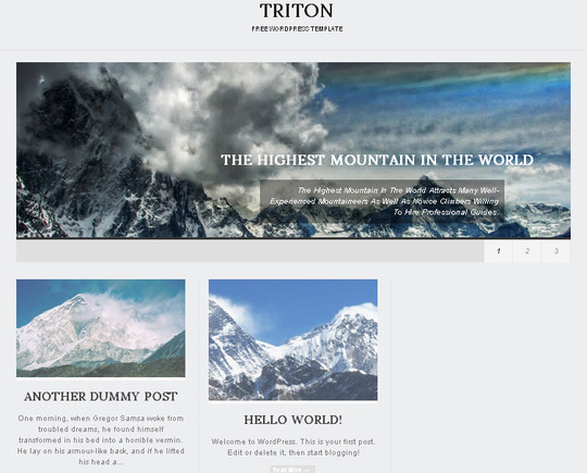 40+ Fresh And Free Wordpress Themes 23