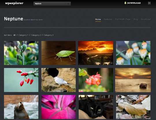 40+ Fresh And Free Wordpress Themes 35