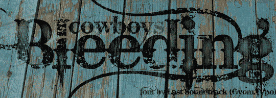20 Creative Grunge Fonts To Download 12