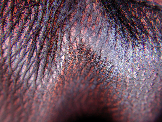 22 Outstanding Free Collection Of Leather Textures 4