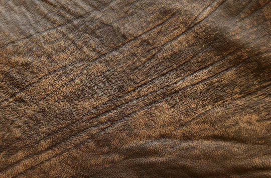 22 Outstanding Free Collection Of Leather Textures 3