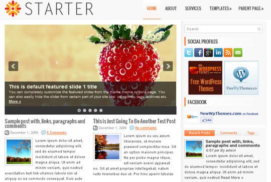 40+ Free Premium Quality WordPress Themes For Your Blog 3
