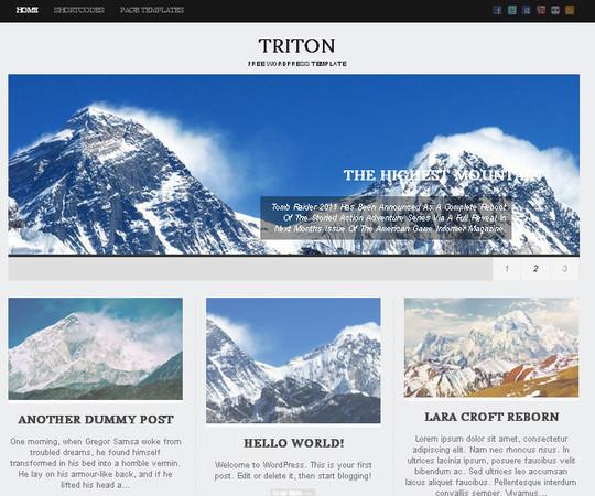 40+ Free Premium Quality WordPress Themes For Your Blog 25