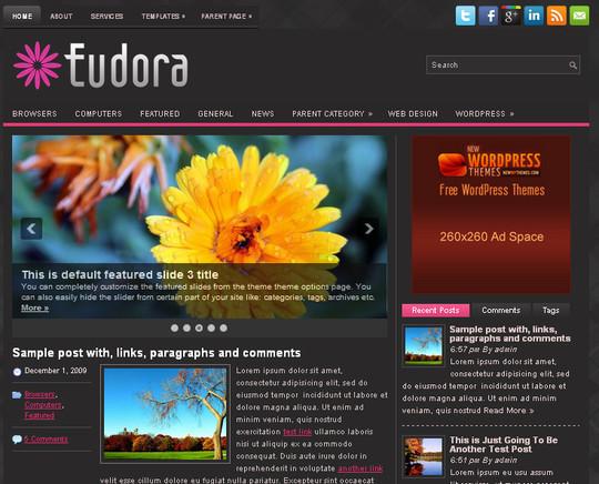 40+ Free Premium Quality WordPress Themes For Your Blog 2