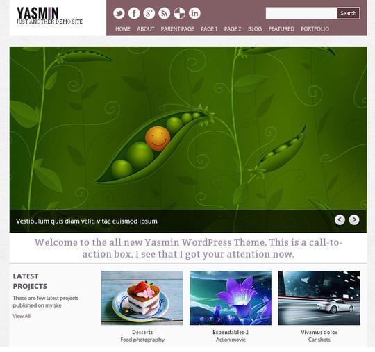 40+ Free Premium Quality WordPress Themes For Your Blog 30