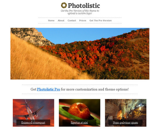 40+ Free Premium Quality WordPress Themes For Your Blog 40