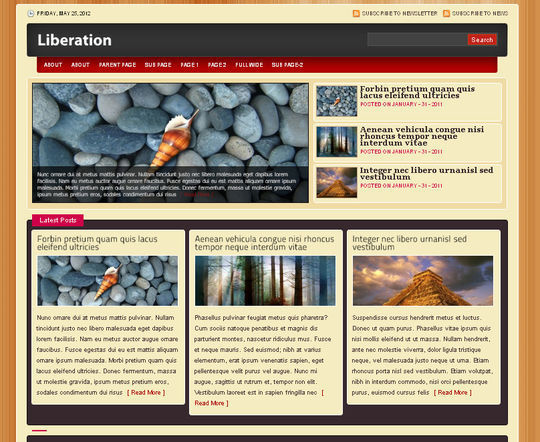 40 Excellent 3 Column WordPress Themes For Free Download 9