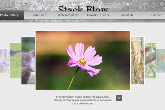 Collection Of Free Flash Website Templates With FLA Source Files 6