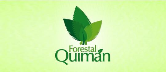 50 Cleverly Designed Leaf Logo Designs For Your Inspiration 44