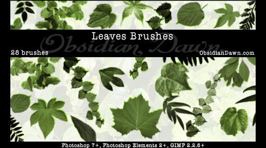 19 Free Photoshop Leaf Brush Sets 14